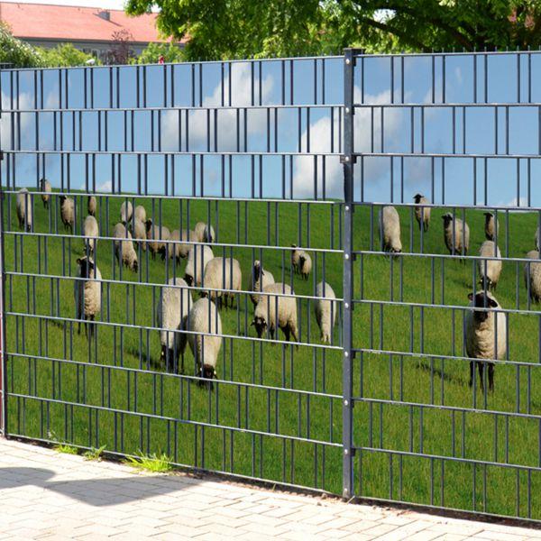Sichtschutzstreifen bedruckt, Motiv Schafe am Deich (Baltrum)
