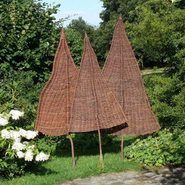 Sichtschutz-Weidenbaum Tanne, natur